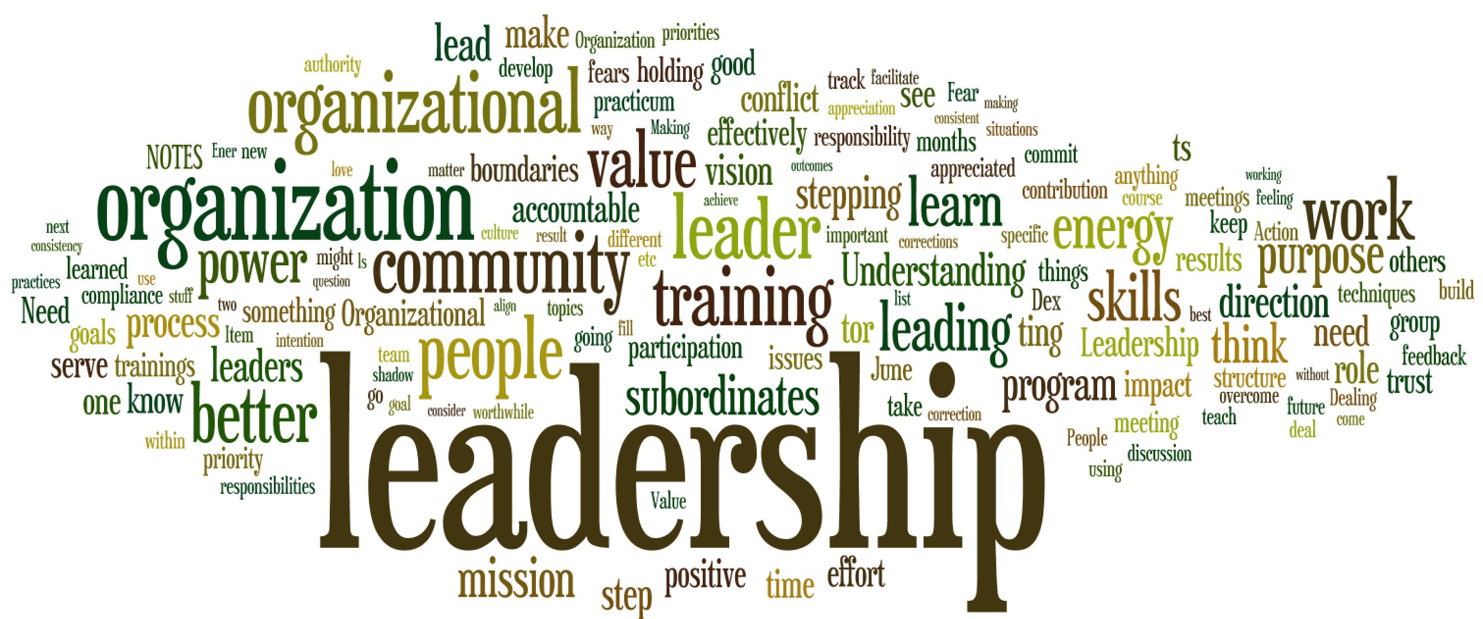 Community Leadership Training Program Wordle